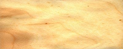 Topol bílý - dřevo
