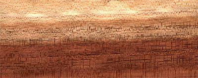 Blackwood australský - dřevo