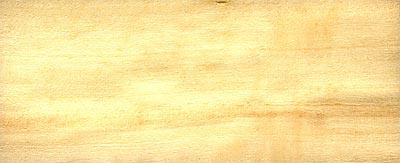 Topol osika - dřevo